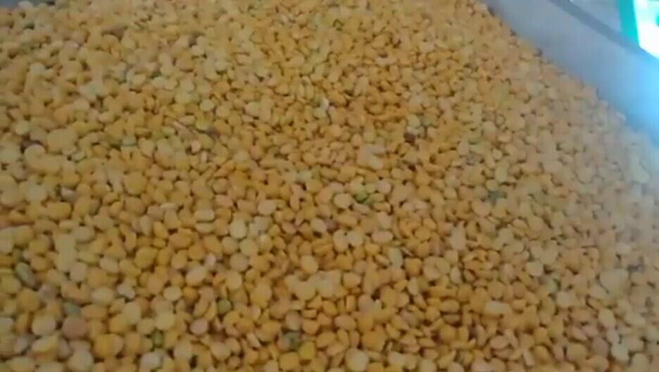 Channa dal first time sorting